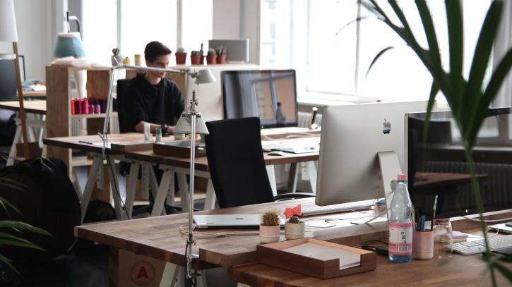 New Work Arbeitsumgebung: Viel Tageslicht, Blick aus dem Fenster, natürliche Materialien, kollegiale Atmosphäre