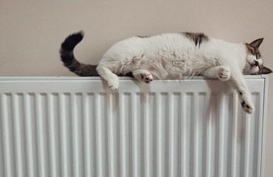 Machen Sie es sich warm